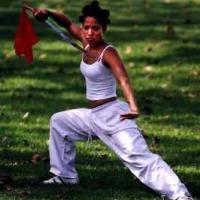 "Angela Meryl Book - ""Stunts: The How To Handbook"""